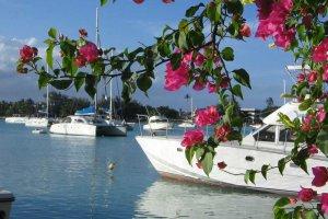 Navtični turizem cveti