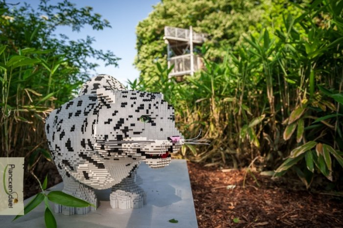 lego-zoo-tiger