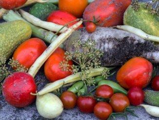 vegetables-940180_1280