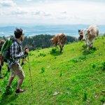 Eko dežela Občine: Kako je poskrbljeno za športne aktivnosti?