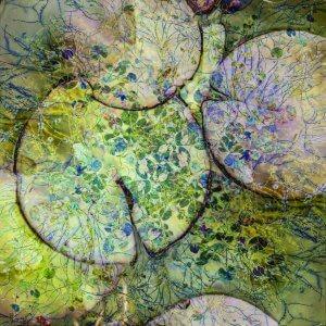 Abstrakcija lokvanjevke (foto: Cathryn Baldock)