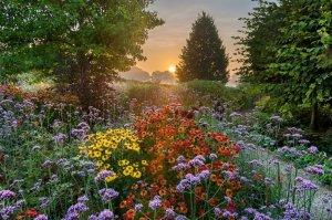 Sončni vzhod v Sussexu (foto: John Glover)