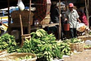 Marsikje je možno kupiti tropske pridelke.