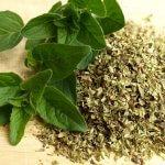 Origano, močan antioksidant, ki spodbuja prebavo
