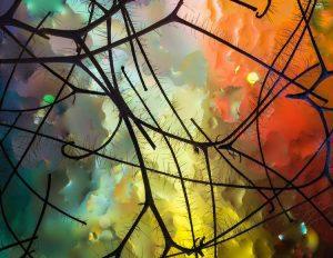 """Miró's Garden"", Elizabeth Kazda, ZDA"