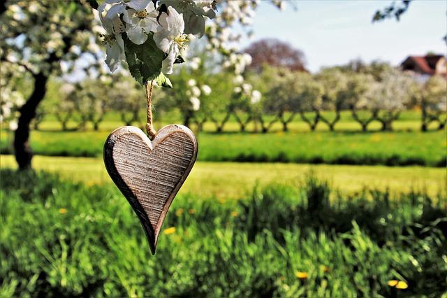 Ekološko kmetijstvo – velik izziv, a ljudem in naravi bolj prijazno