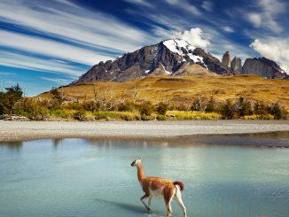 Torres del Paine, nacionalni park (vir: depositphotos)