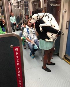 Prvič na vlaku ...
