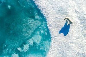 """Climate Refugees"", Florian Ledoux"