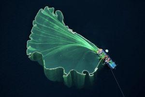 """""""Fishing net"""", Trung Pham"""