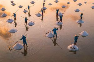 """In the salt field"", Trung Pham"
