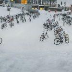 Večina otrok v šolo s kolesom, tudi pri – 17ºC!