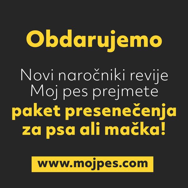 mojpes_banner_paket_presenecenja