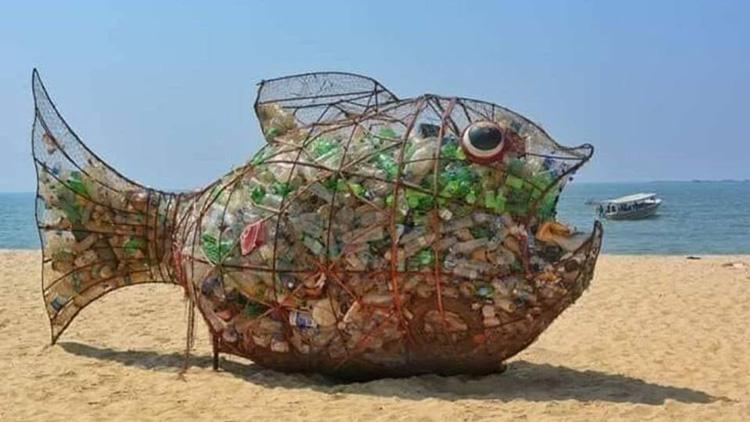 Riba Goby rešila problem odpadkov na plaži