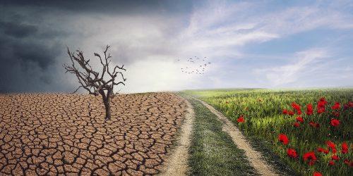 Evropska komisija podnebne spremembe zakon