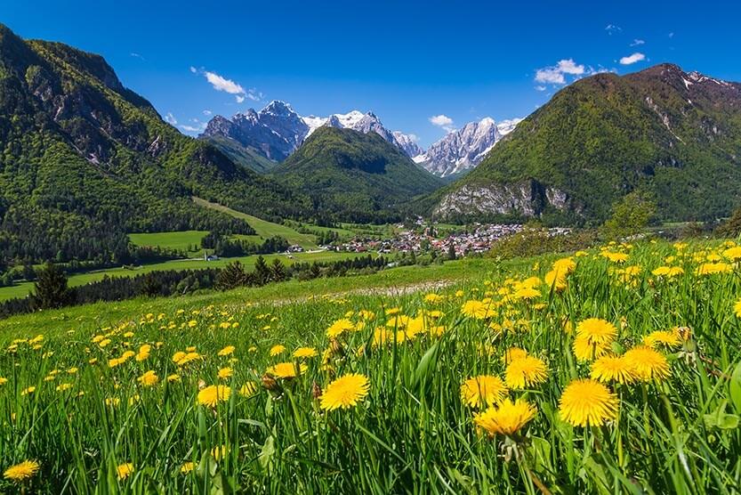 Vsakodnevni polurni sprehod v naravi: 18 pozitivnih učinkov na zdravje