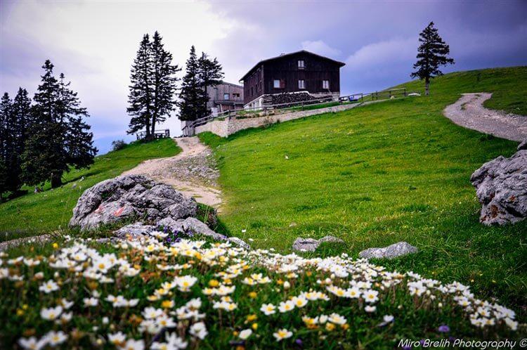 Domžalski dom na Mali planini (1534 m)