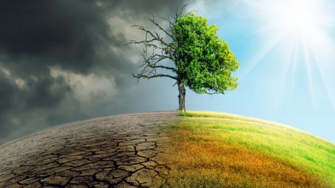 Vlada zavrnila predlog o razglasitvi izrednih podnebnih in okoljskih razmer