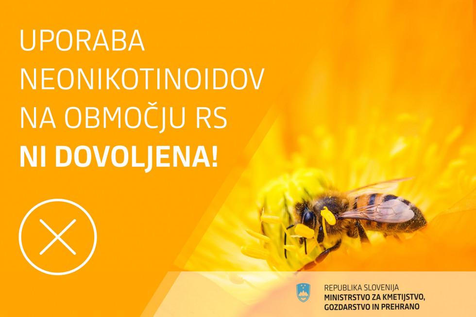 Neonikotinoidi v Sloveniji niso dovoljeni - za čebele gre!