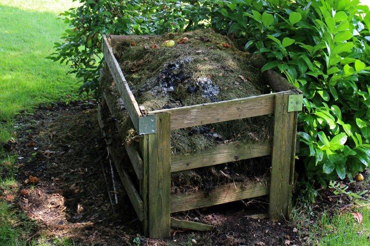 Kako rešiti pogoste težave s kompostom?