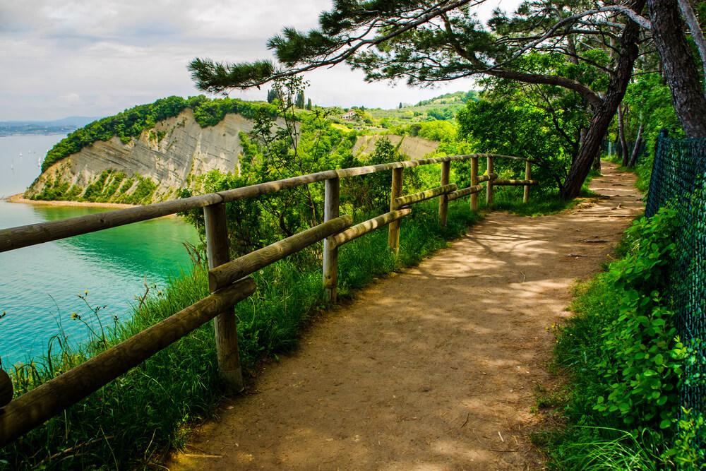 Družinska in aktivna doživetja v slovenski Istri