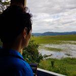 Drvošec - Pogled z opazovalnice Stolp | foto: Eva Kobe