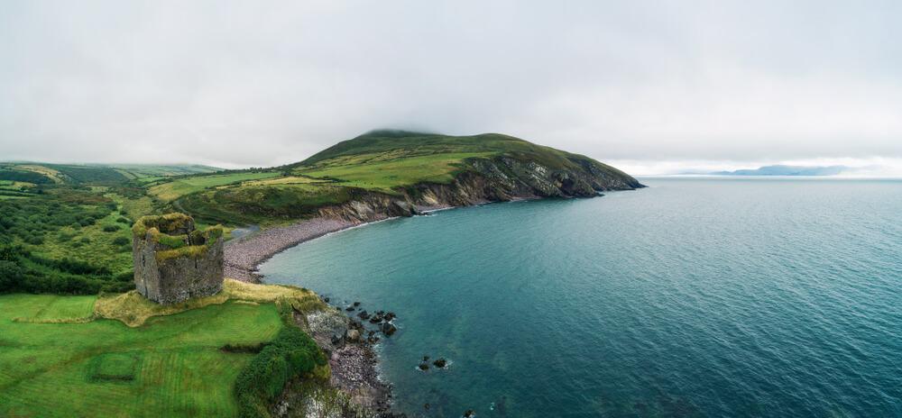 Irska žaluje za pogrešanim slavnim delfinom iz Dingla