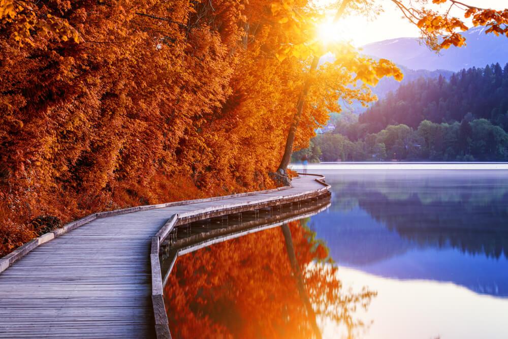 Zlatorogova pot - nova tematska pot ob Blejskem jezeru
