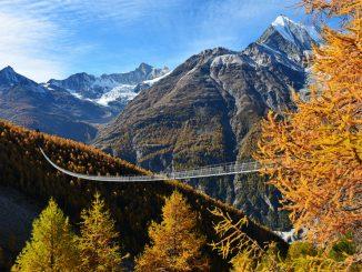 Najdaljši viseči most na svetu je dolg kar 516 metrov!