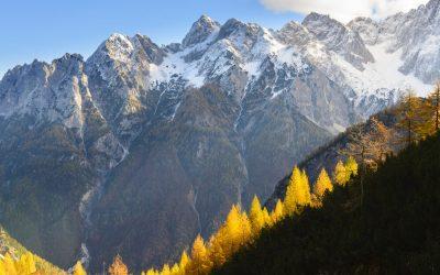 Novosti v Biosfernem območju Julijske Alpe