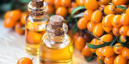 Rakitovec – jesensko bogastvo vitamina C