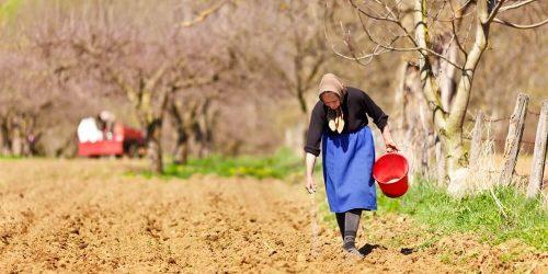 Danes obeležujemo Svetovni dan kmetic