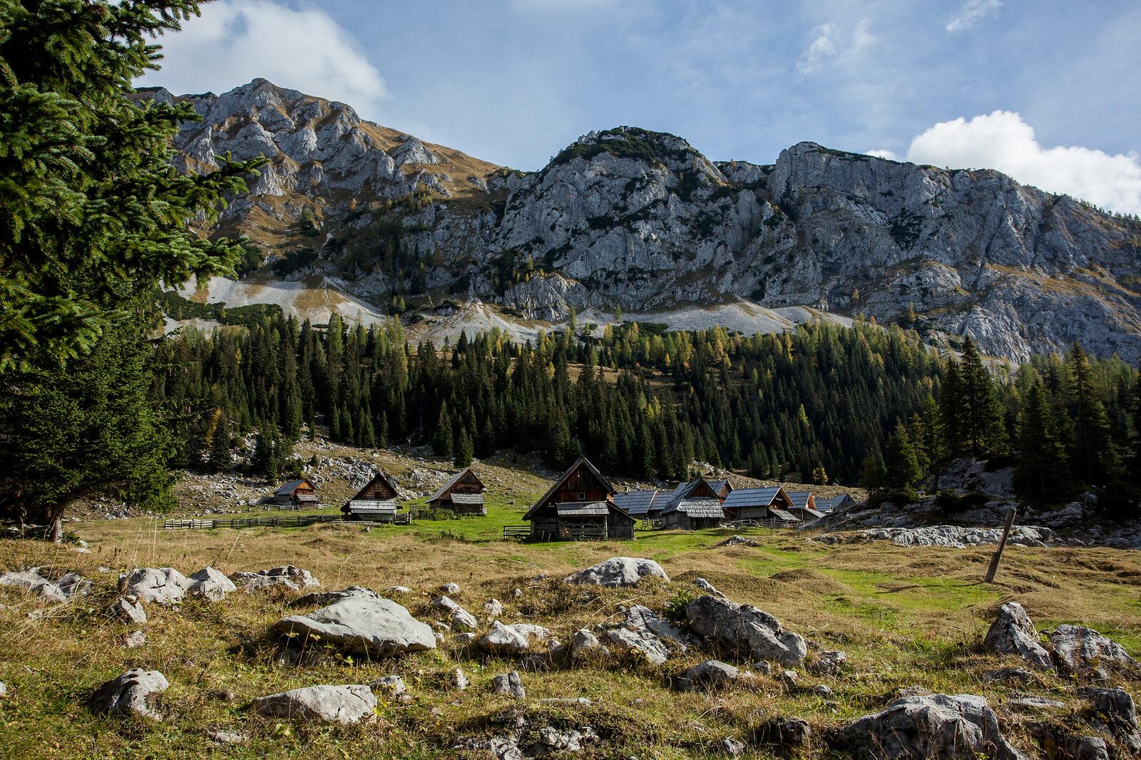 Namig za izlet v 2021: Planina v Lazu - avtentično pastirsko naselje