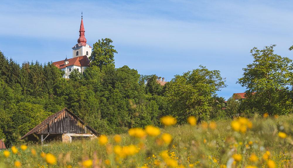 Kozjanski regijski park obeležuje 40 let