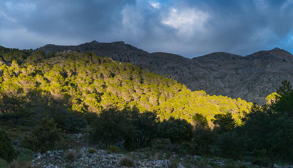Španska gorska čudežna dežela bo postala narodni park