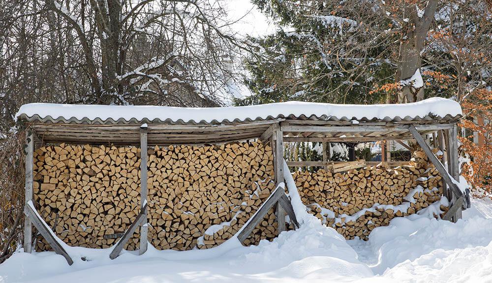 Kaj prinaša 2021 za boljšo izrabo lesa?