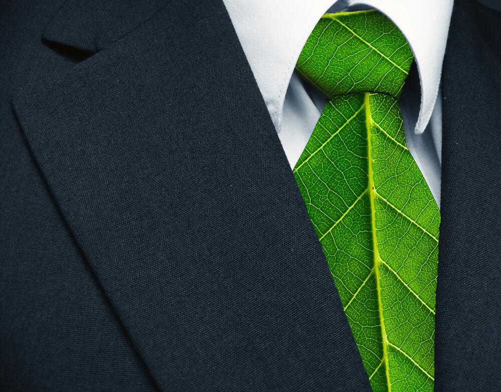 1,5 milijona EUR za zelena delovna mesta