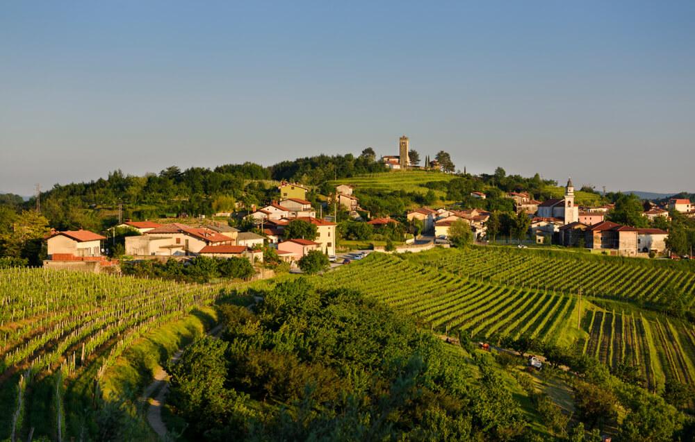 Občina Brda predstavlja Slovenijo za Nagrado Sveta Evrope za krajino