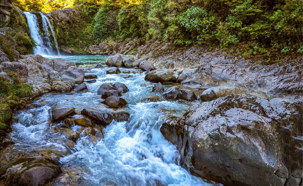 Razstava Voda življenja razkriva tudi temačne skrivnosti virusov