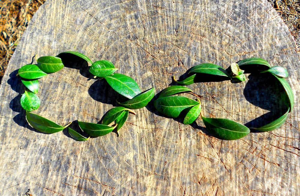 Okrevanje gospodarstva: Marsikdo se boji zelene preobrazbe?