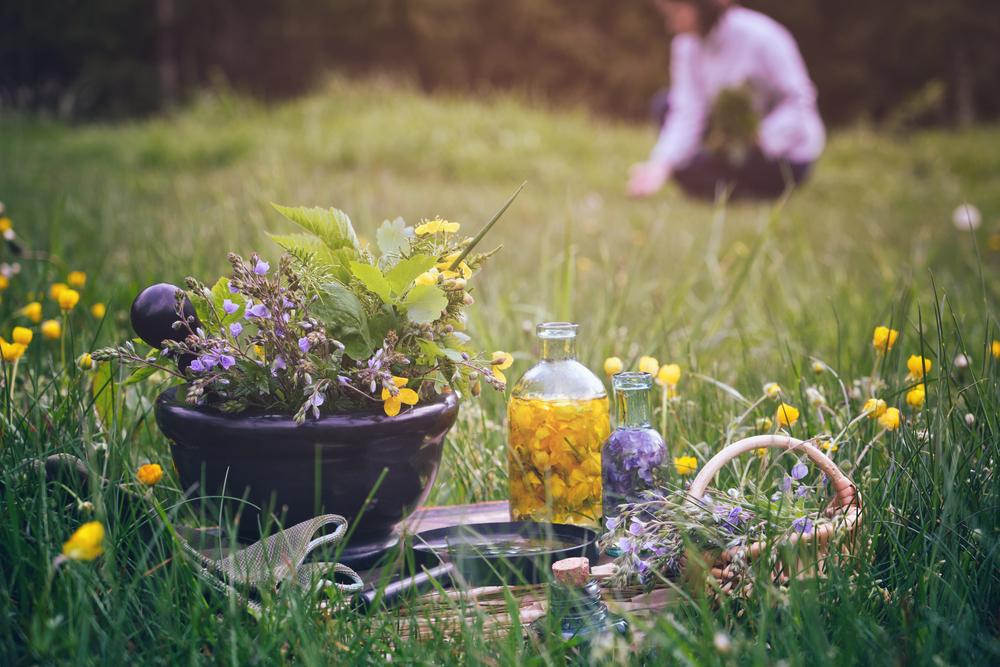 Naturopatija: Človek se lahko pozdravi sam
