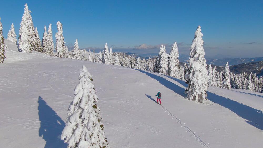 Lepote slovenske zimske narave - v pohodnih čevljih ali na krpljah