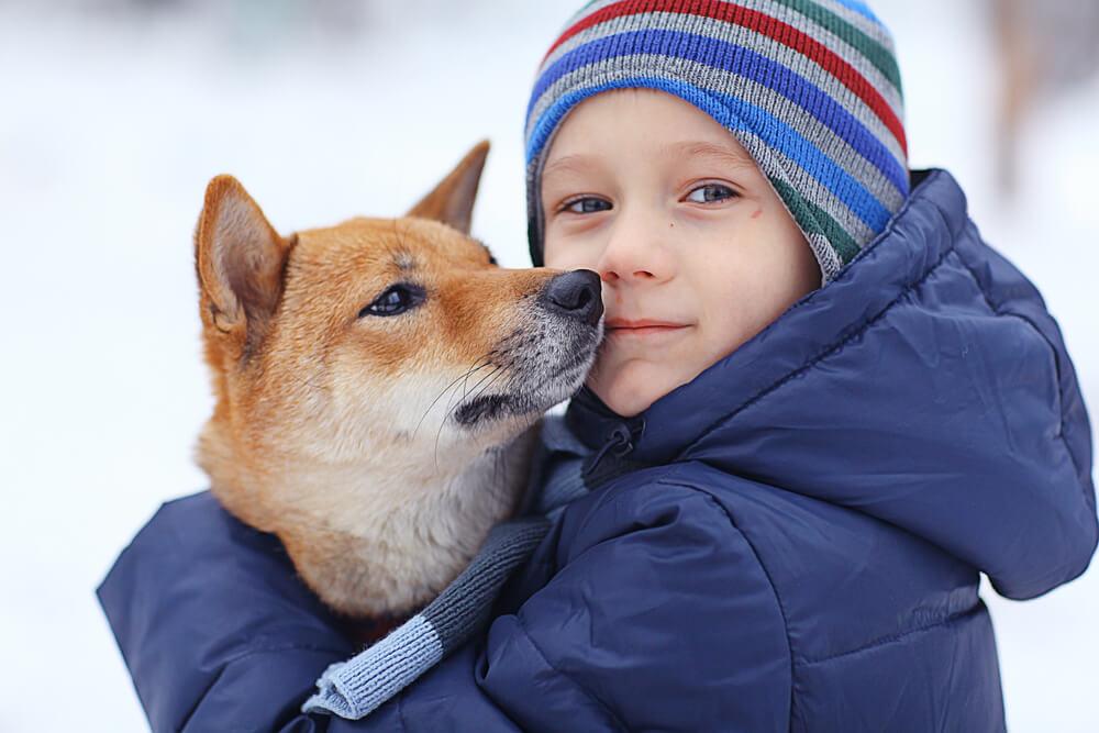 Hišni ljubljenčki nam prinašajo številne koristi