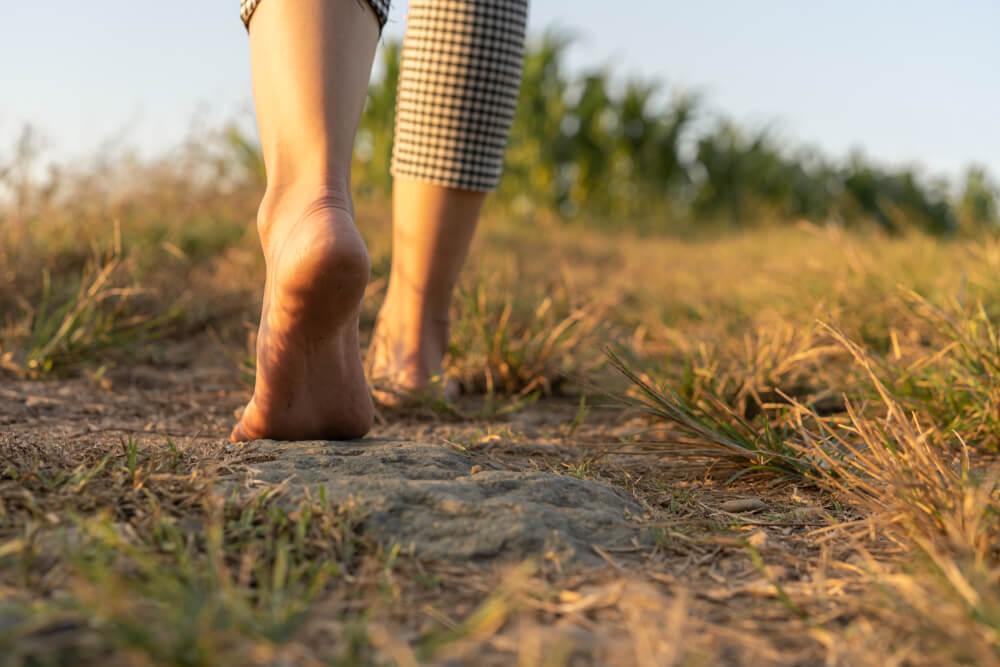 Bosonoga hoja - priporočajo jo le po naravi, po betonu pa ne