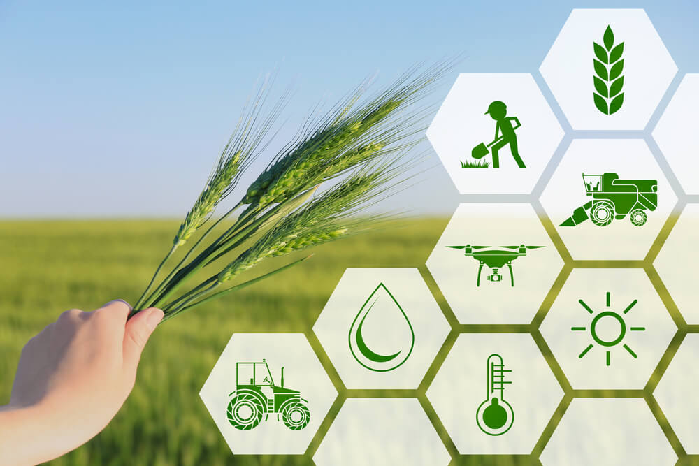 Katere koristi prinaša pametno kmetijstvo?