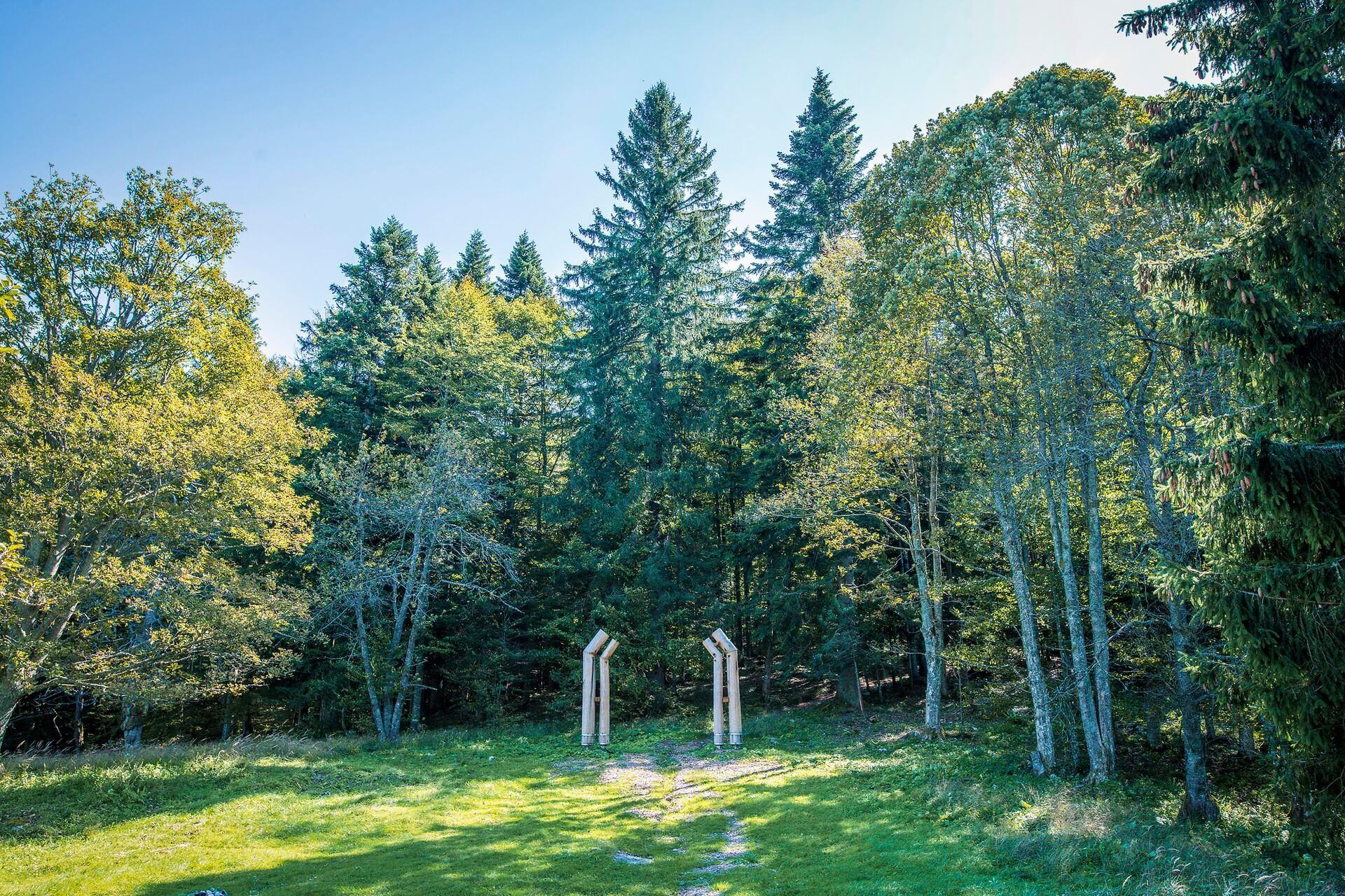 Teden gozdov in otvoritev pragozdne poti