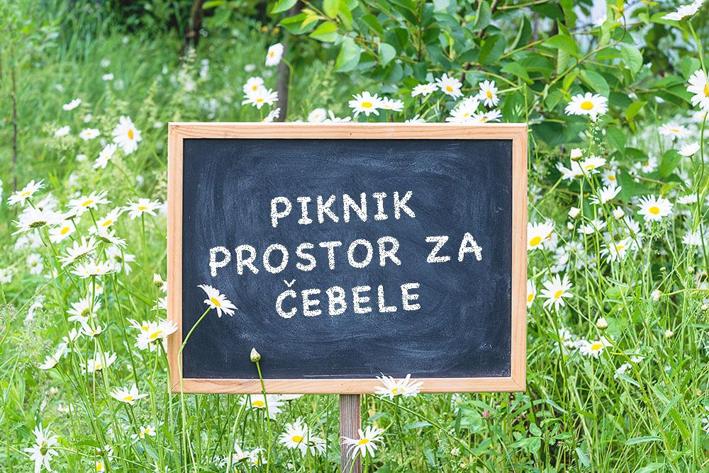 Opraševalcem prijazne prakse po slovenskih občinah
