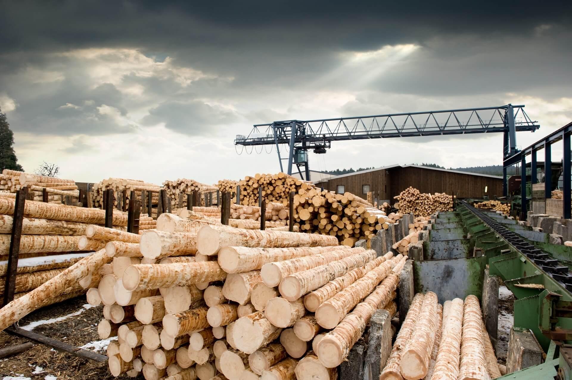 Pomen lesne industrije za doseganje podnebnih ciljev