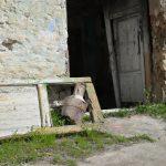 To so slovenska naselja brez prebivalcev