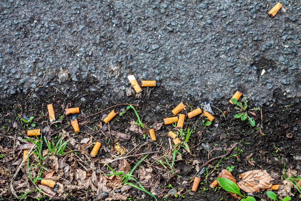 Cigaretnim ogorkom bo v tem mestu odklenkalo